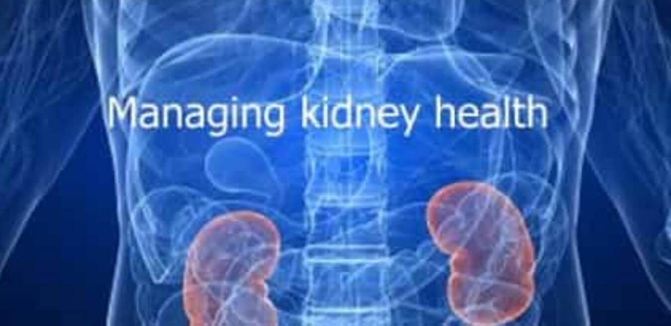 Health Kidneys